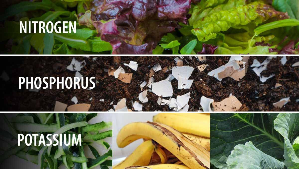 Composting: sources of NPK