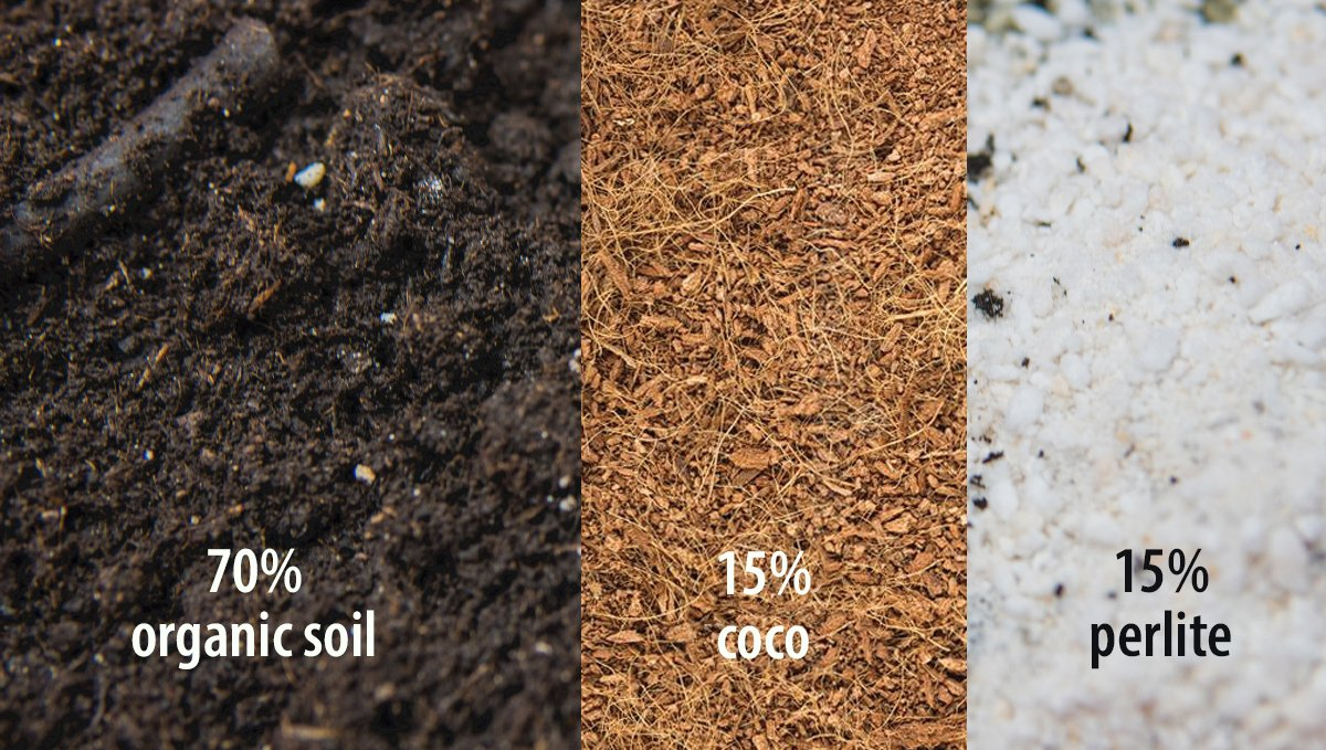 Best organic soil mix for experiences growers