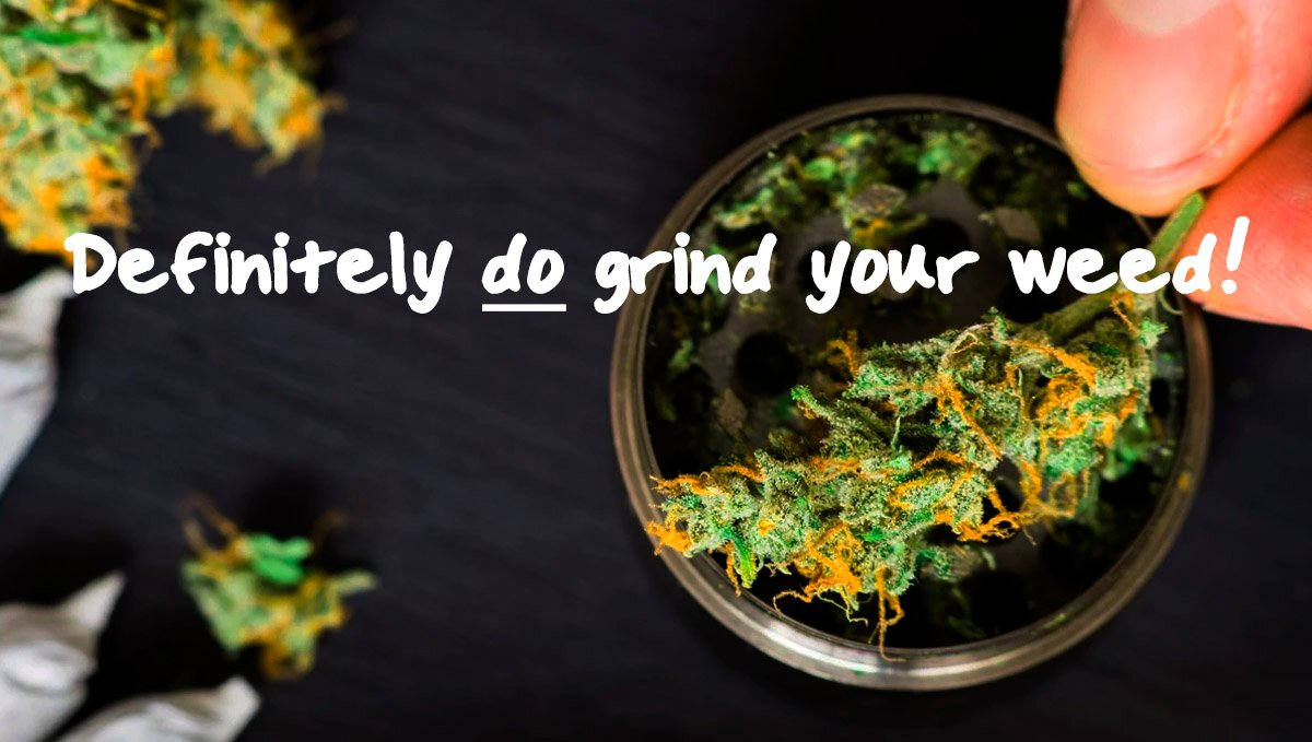 You should absolutely definitely grind your weed!