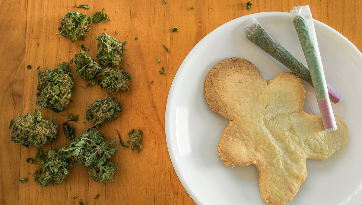 Marijuana has proven scientifically its efficacy for appetite boosting.