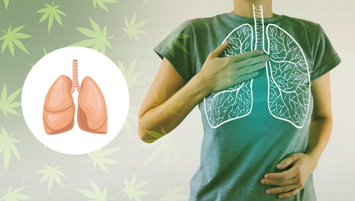 Edibles have zero affections on our lungs
