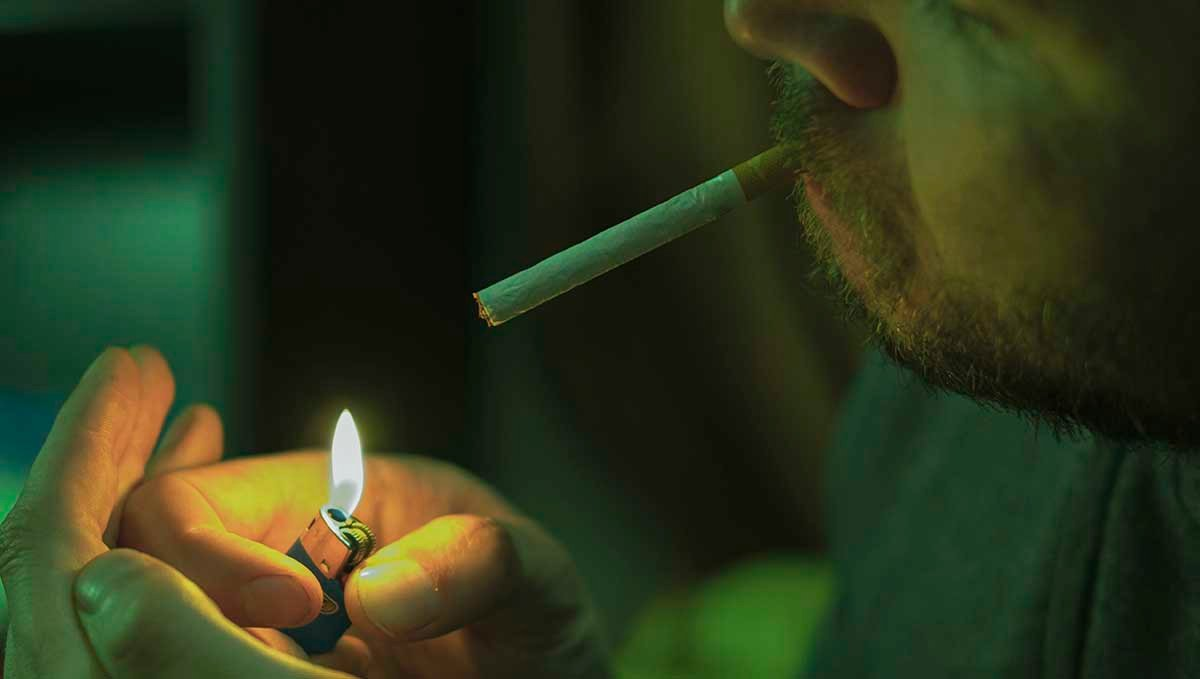 Tobacco and Weed: Everything You Should Know About Spliffs: Learn what effects nicotine and cigars cause.
