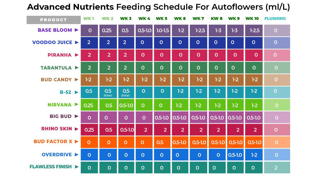 Advanced nutrients for autoflowers: feeding chart for autoflowers