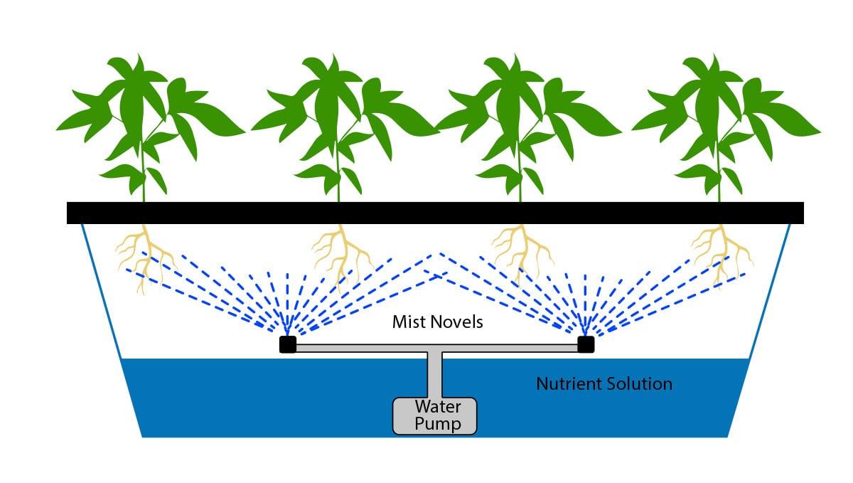 aeroponics vs hydroponics