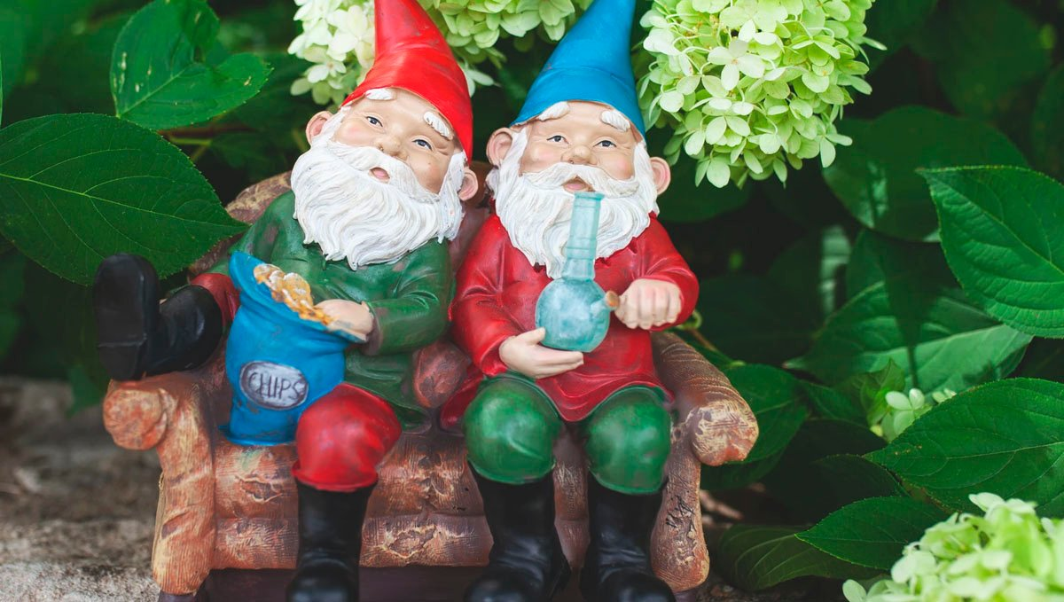 These stoner garden gnomes couldn't make the garden look any better!