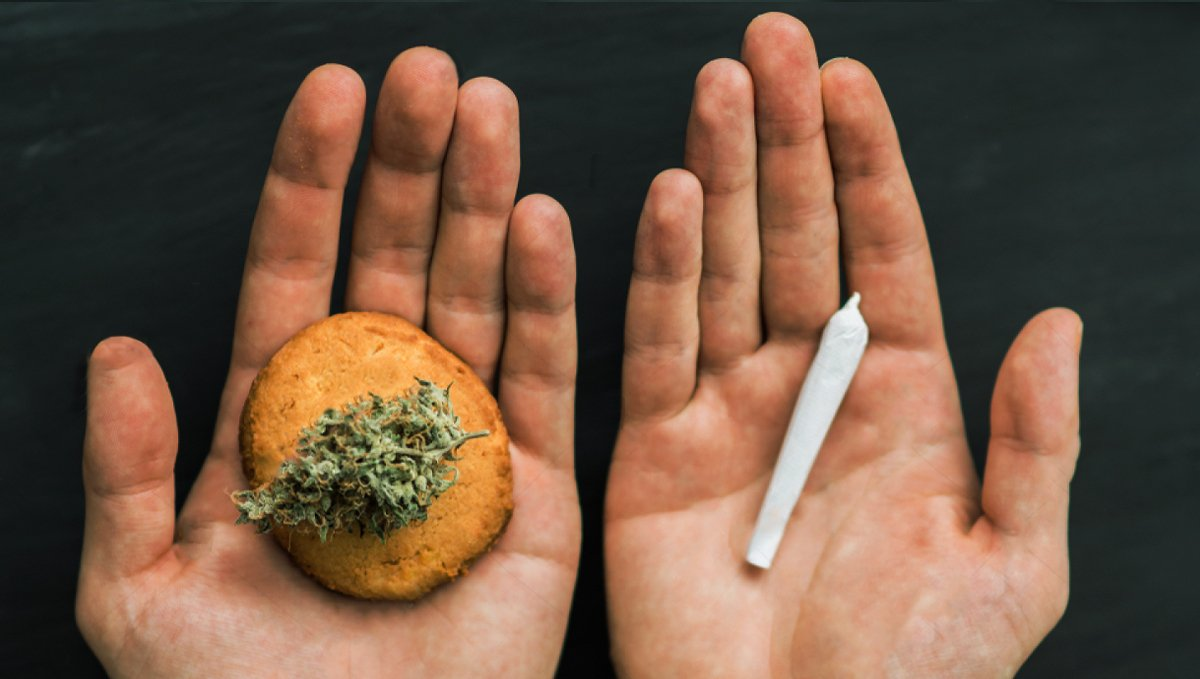 Eating Cannabis is Healthier Than Smoking