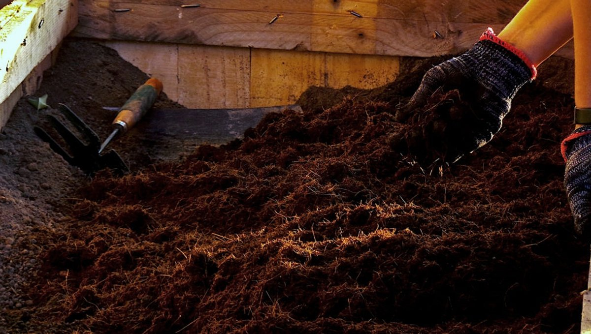 Composting: how to use compost