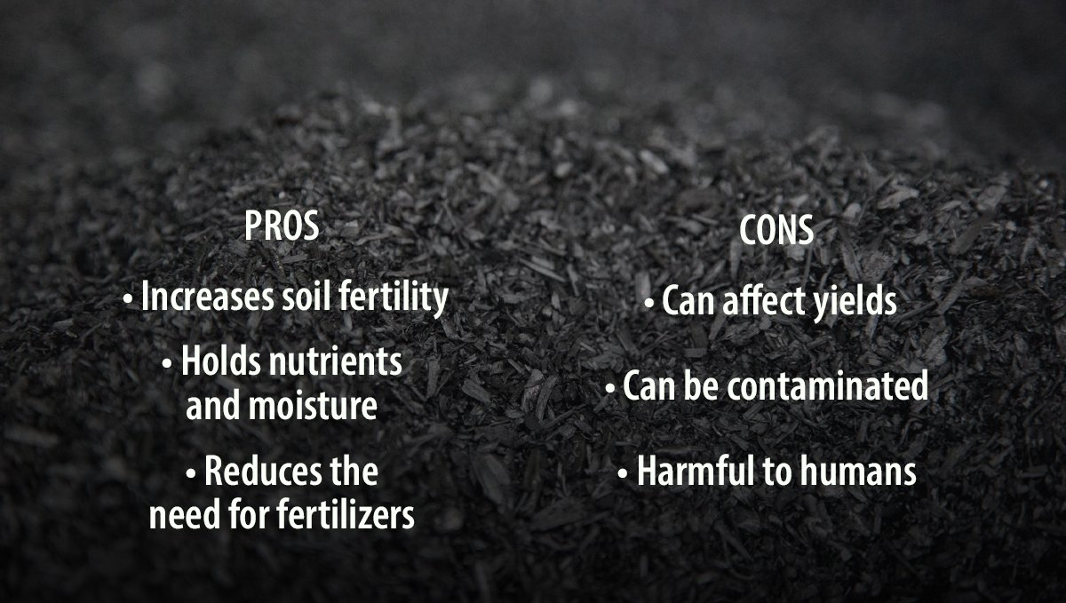Pros and Cons of Adding Biochar to your Soil