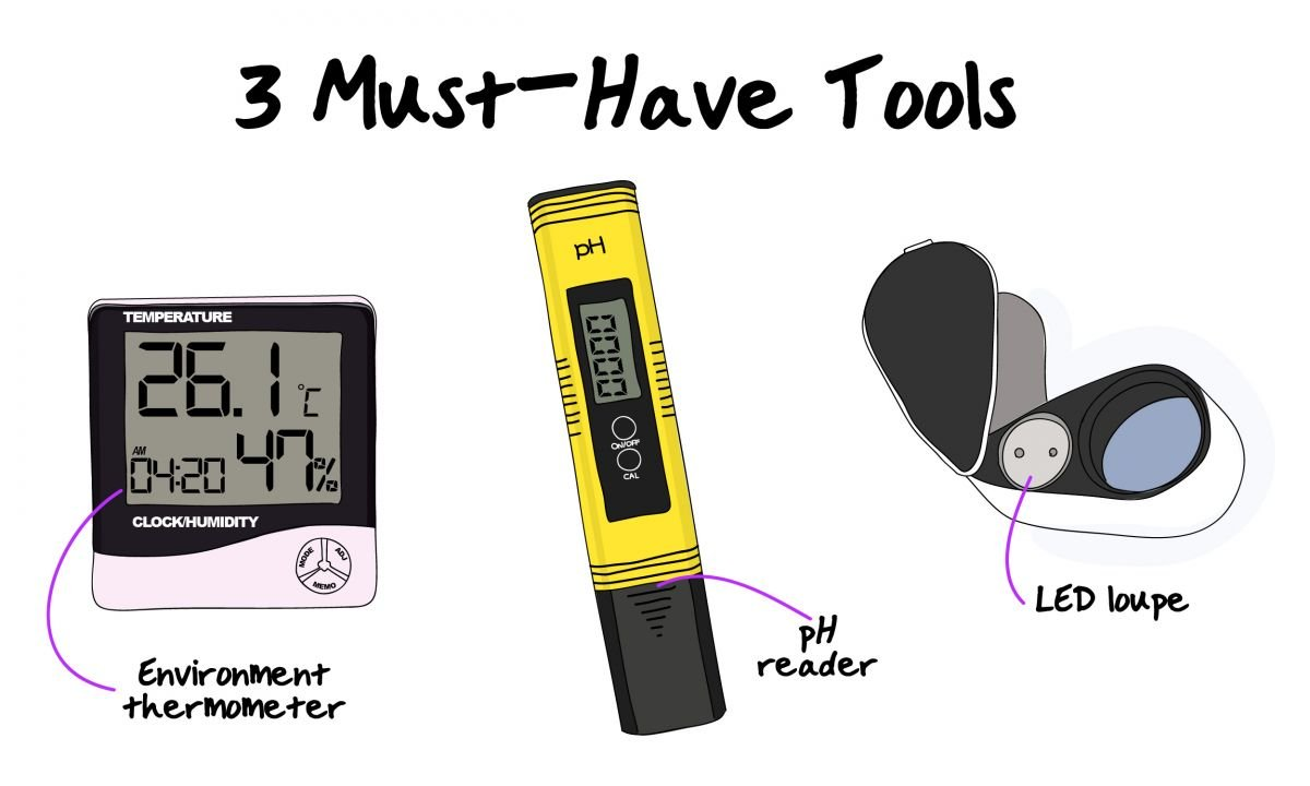 3 must-have tools