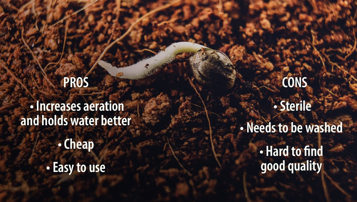 Pros and Cons of Adding Coco to your Soil