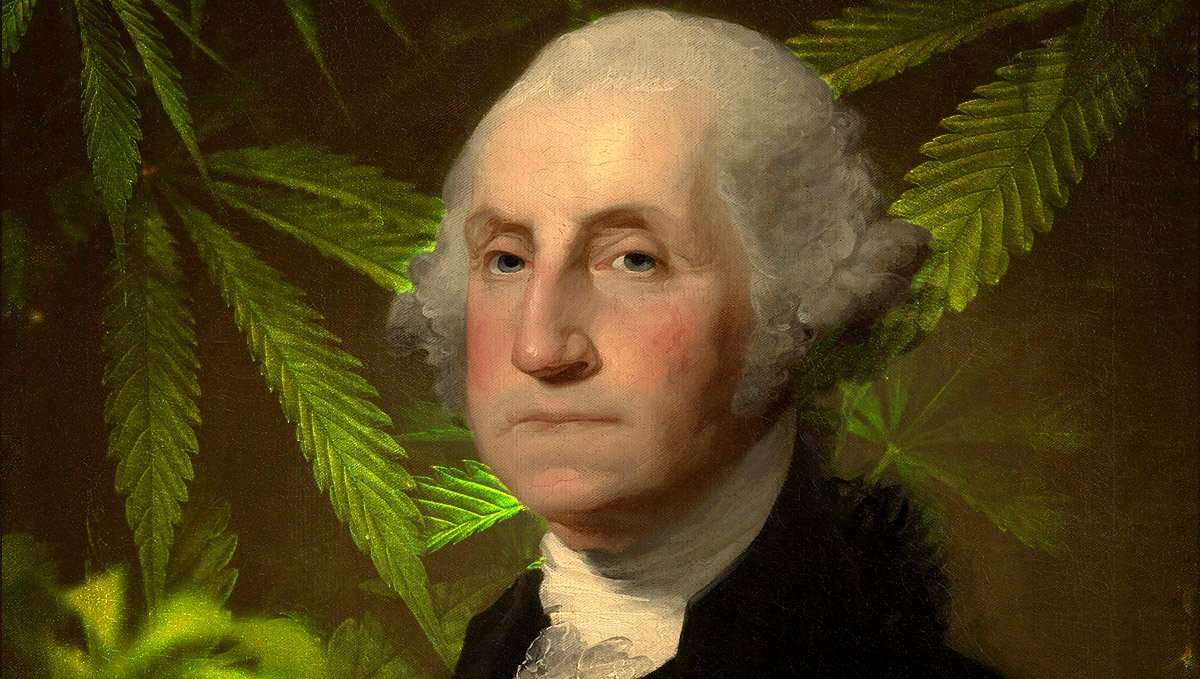 Evidence of cannabis use has been found in G. Washington's journals.