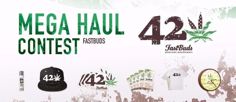 Fast Buds Haul Contest