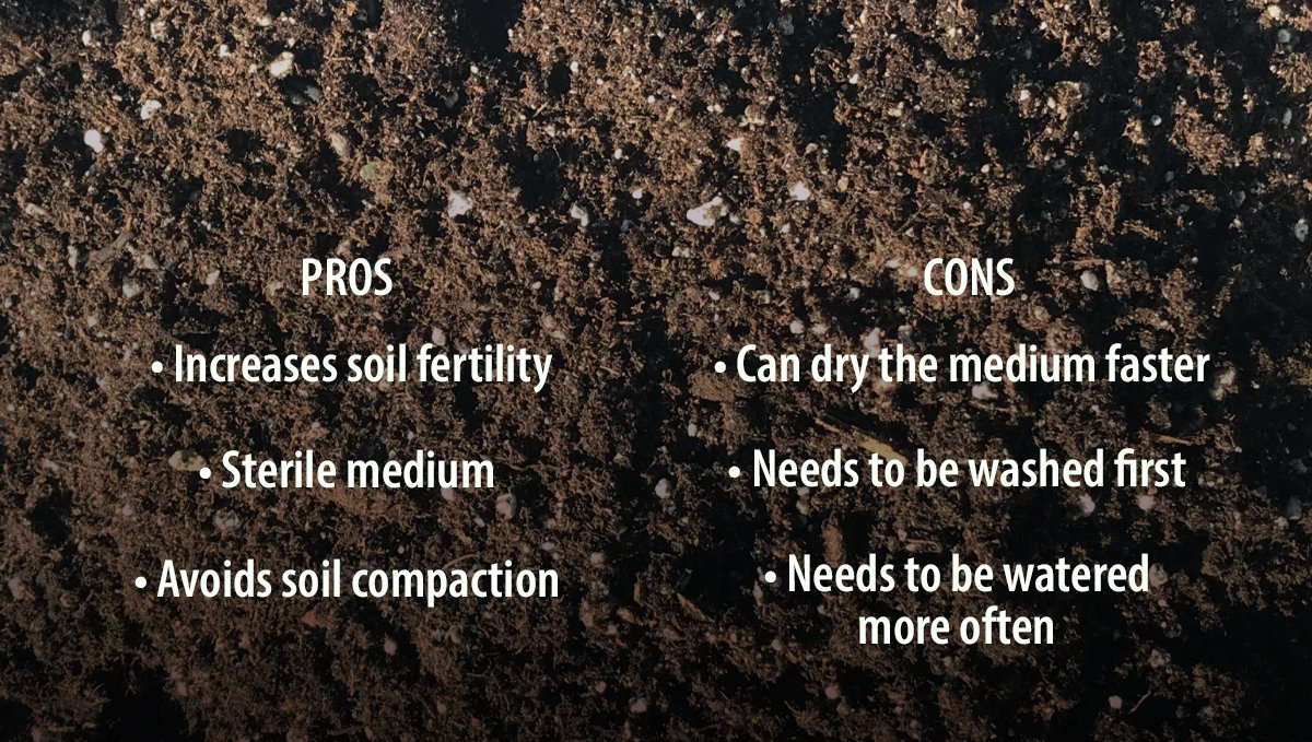 Pros and Cons of Adding Perlite to your Soil