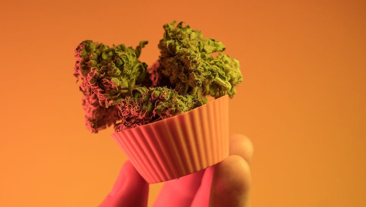 How to Calculate THC Dosage for Cannabis Edibles
