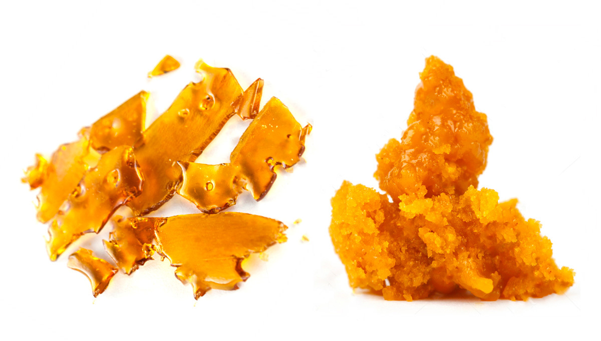 Cannabis Concentrates: Shatter vs Wax