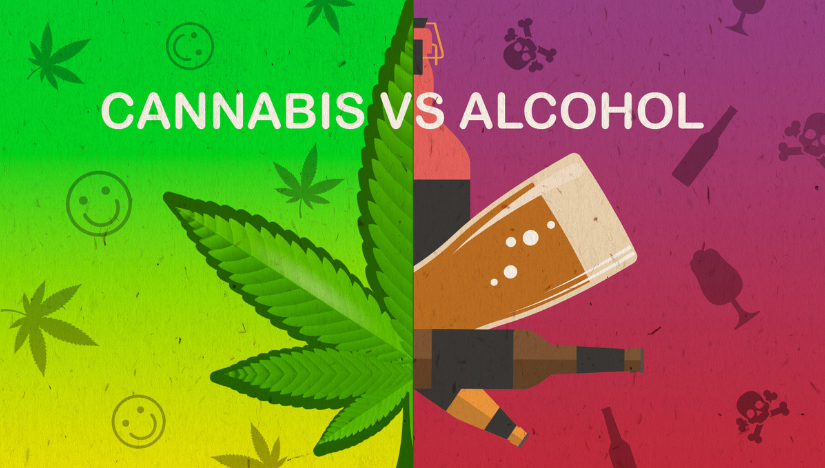 Cannabis Vs Alcohol – Whats Safer for You?