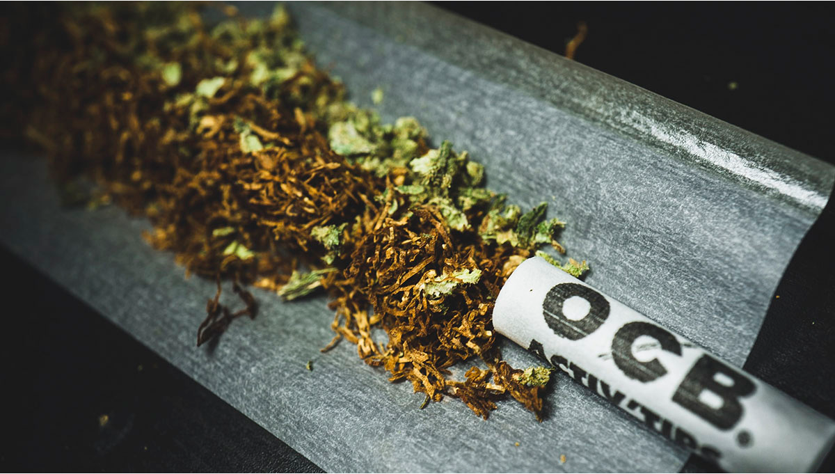 Tobacco and Weed: Everything You Should Know About Spliffs