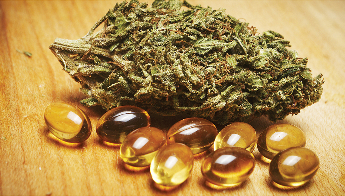 How To Make Cannabis Capsules Step-By-Step