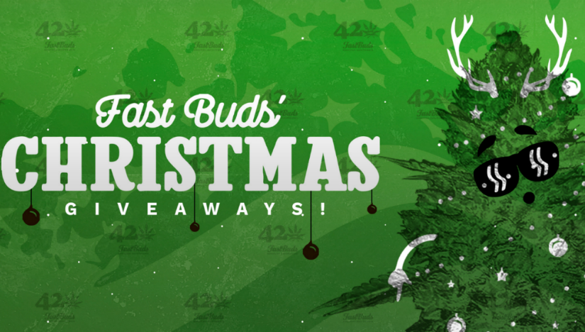 Win Free Seeds in Fast Buds' Christmas