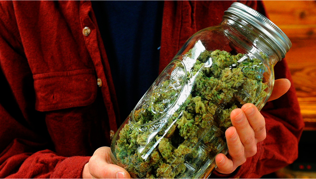 Can Weed Go Bad Or Expire?