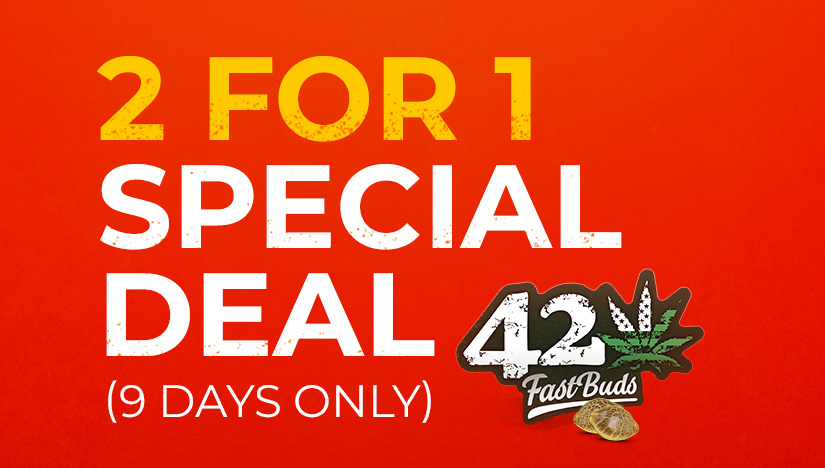 Fast Buds' Buy One Get One (2x1) Sale Starts Now!