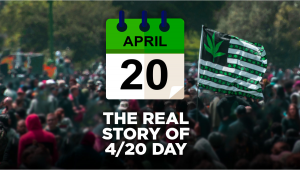 Celebrating 420: The History Behind April 20