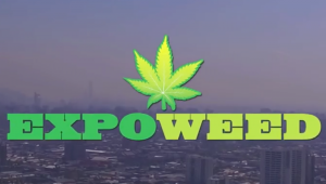 Fast Buds Heads to Santiago for Expoweed 2017