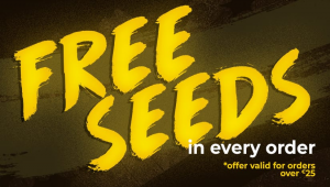Introducing Bonus Seeds In Every Order Above 25€