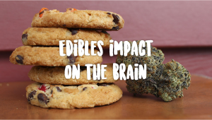 Edibles Impact On Your Brain
