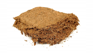 How to grow autoflowering cannabis in coco coir?