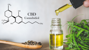 How does CBD Counteract the Effects of THC?