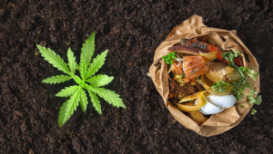 Organic Cannabis Nutrients Composting