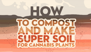 How to Compost and Make Super Soil for Cannabis Plants
