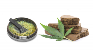 Cannabis Concentrates: Dry Sift vs Bubble Hash