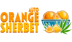Orange Sherbet Auto logotype